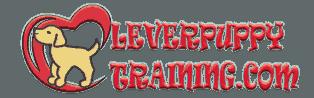 CleverPuppyTraining.com