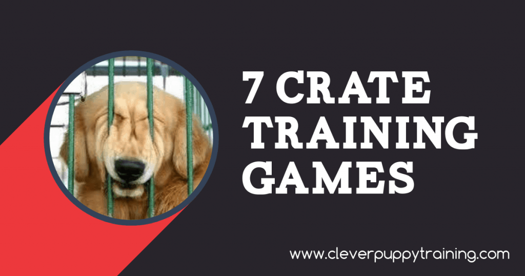 Crate Training Games