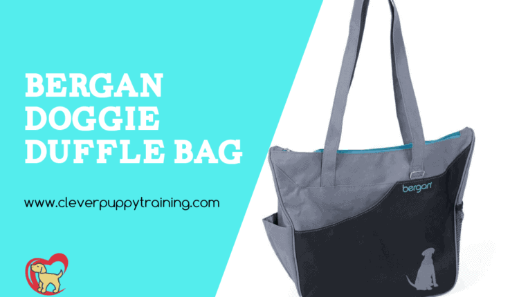 doggie travel bag