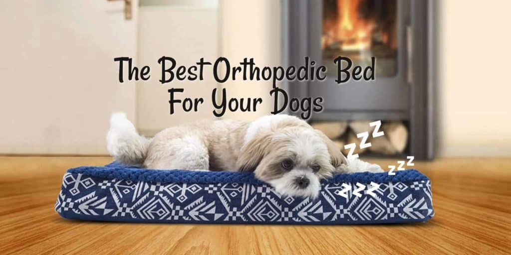 Orthopedic Bed For Your Dogs